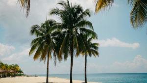 Havas Voyages feature image