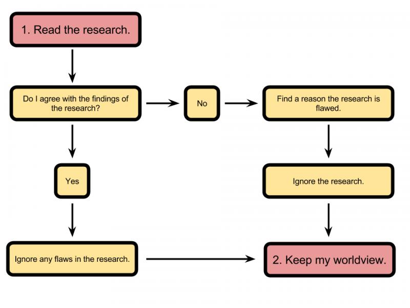 Confirmation bias diagram