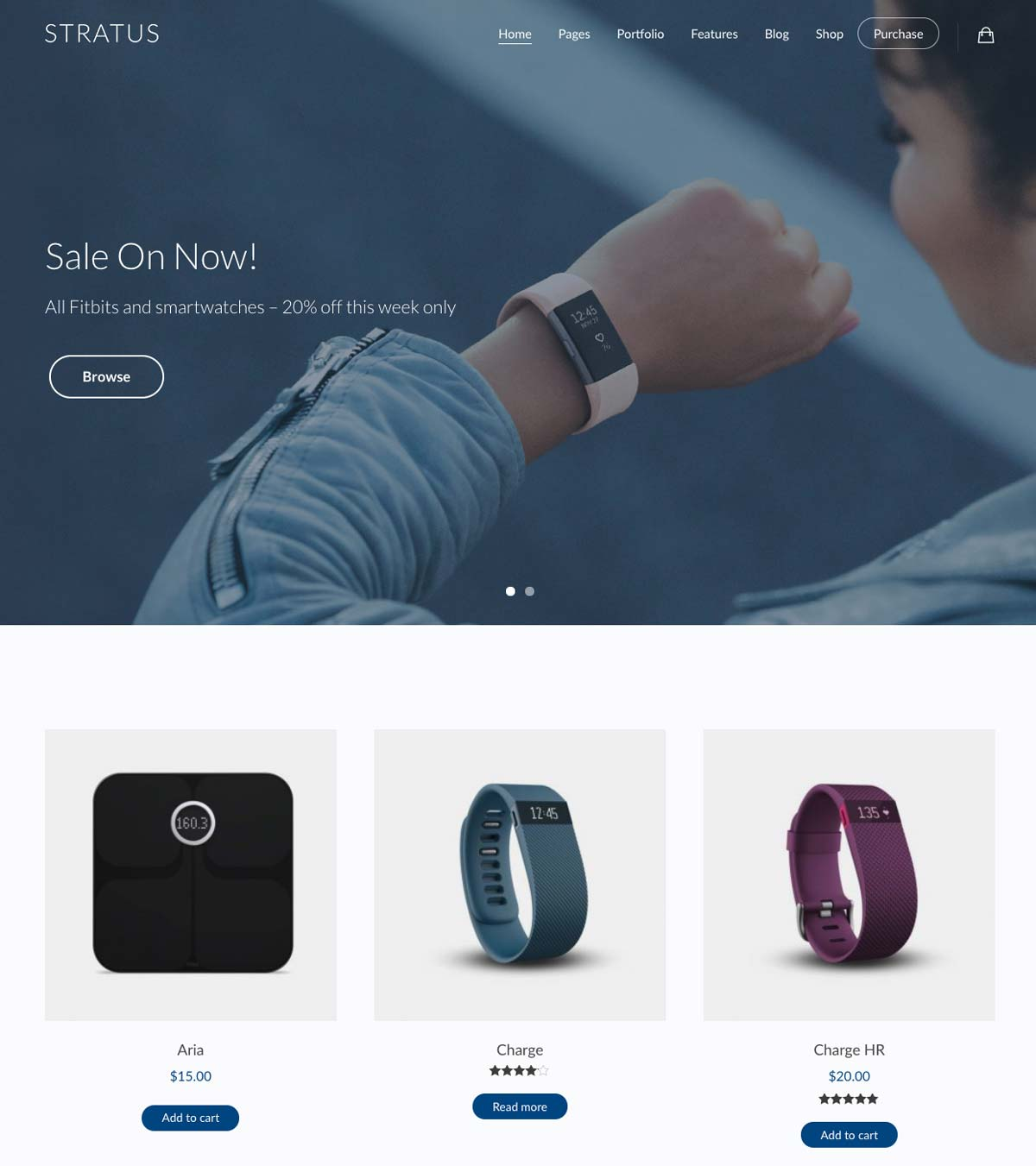 Wordpress Template Landing Page Ecommerce